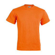 T-shirt adulto ale