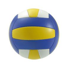 palla da pallavolo